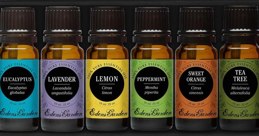 Essential oils might be the new antibiotics herbs info - Edens garden essential oils amazon ...